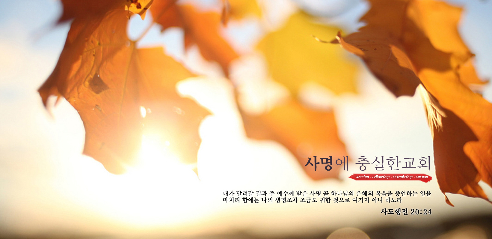 homepage-banner1